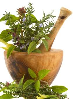 pilon plantes