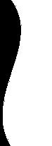 whitedivider1.png