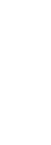 whitedivider2.png