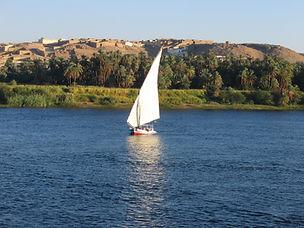 Egypt-11-2006 NC 1805.jpg