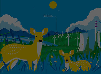 Gif Animation.jpg