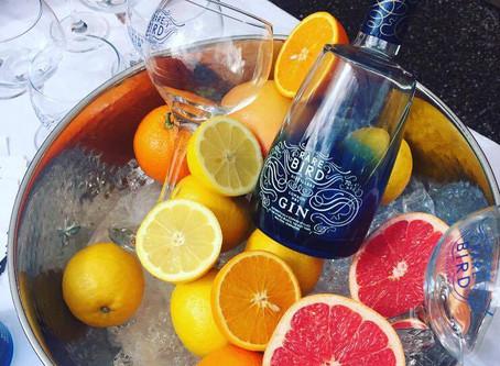 Rare Bird Distillery Opens in Talbot Yard
