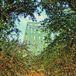 The Sewickley bridge looking quite beautiful framed in springtime blooms 💛💛💛