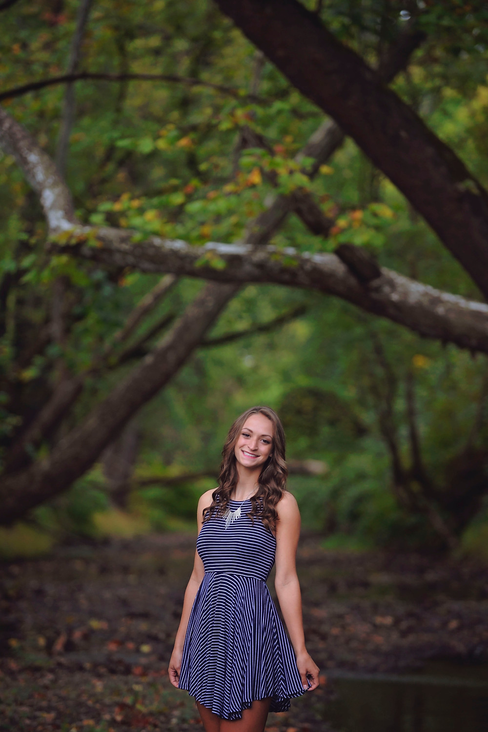 pittsburgh senior portraits, pittsburgh senior pictures, ambridge highschool