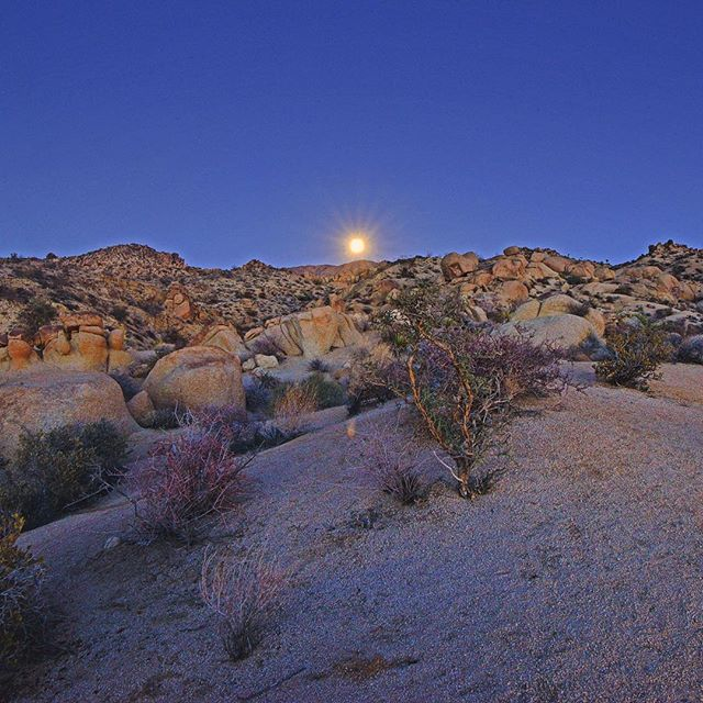 It was nothing short of amazing getting to watch the full moon rise into a cloudless night sky at Jo