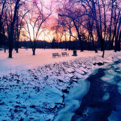I braved the frigid temps and took a short stroll around the park after work yesterday