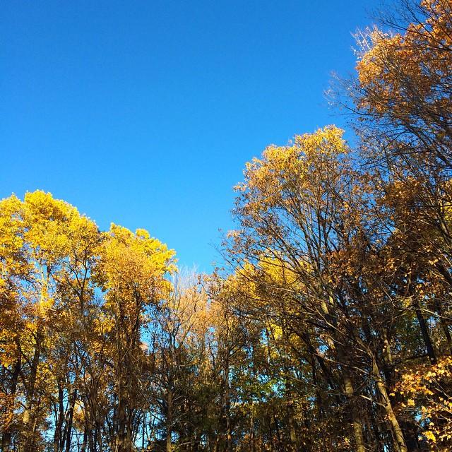 Seriously blue sky from Sunday