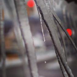 drip.jpg drop