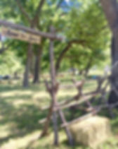 Host your company picnic at Texas Trail Rides today!