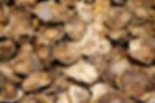 shutterstock_119772544.jpg