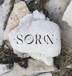 SORN2021