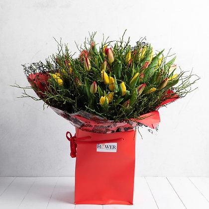 50 Tulips