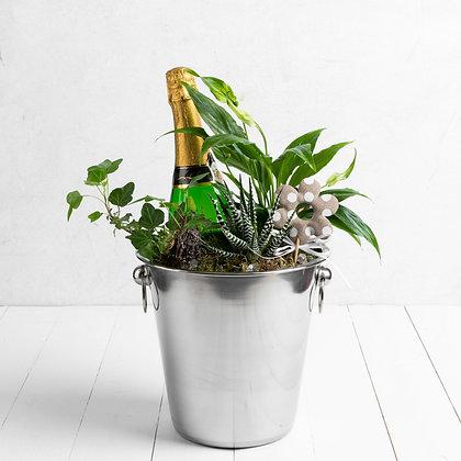 Planted ice bucket