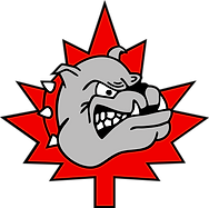Bulldogs Vector Colour - Large.png
