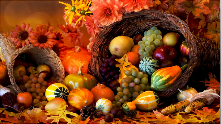 Thanksgiving Graphic no verbiage.png