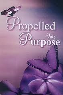 Propelled Into Purpose