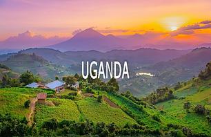 Loc-UGANDA.png