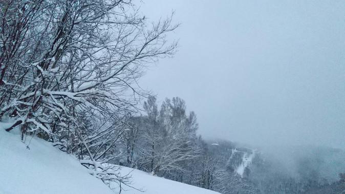雪質は良好!ゲレンデはガラ空!  2021年1月17日