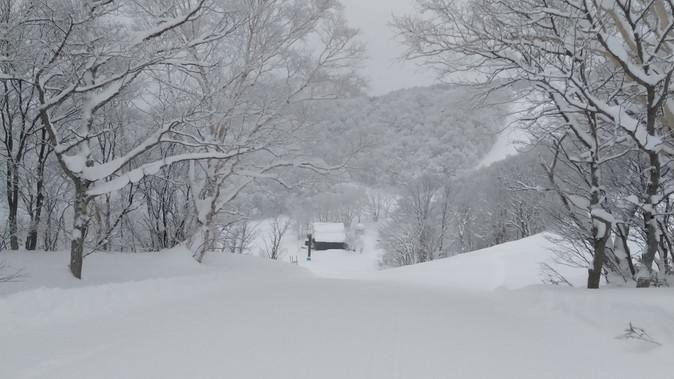 新雪ヤッホーでした。   2021年1月8日