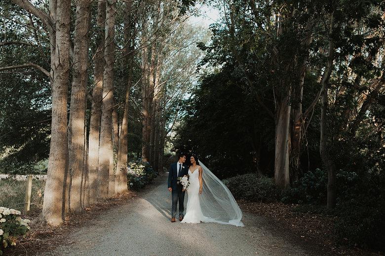pemberton-gardens-wedding