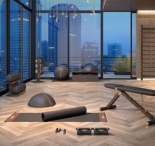 Luxury Hand Crafted Gym Equipment.jpg