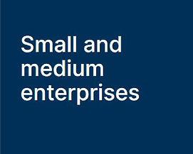 Small & medium businesses.JPG