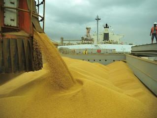 Brasil já exportou mais de 81 milhões de toneladas de soja em 2020