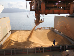 Entre março e agosto, MS aumenta em 17% a participação da exportação agropecuária