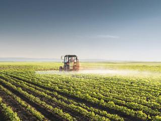 Agroindústria tem 4° mês consecutivo de alta na comparação mensal