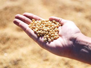 Exportações do agronegócio batem recorde para meses de junho com US$ 10,1 bilhões