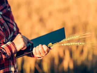 Agricultura digital ganha força em 2020