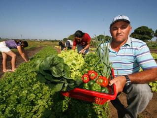 Agricultura familiar: governo solicita criação de crédito emergencial