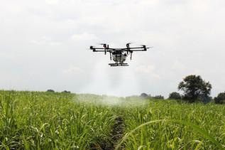 Drones de pulverização podem ser aliados da aviação agrícola