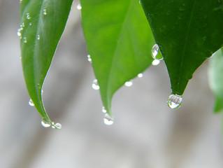 Chuva forte deve atingir todo país