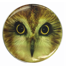 "Hooting Owl Custom Graphic Owl 22"" Bass Drum Head"