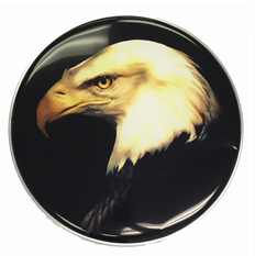 "The Golden Eagle Custom Graphic Eagle 22"" Bass Drum Head"
