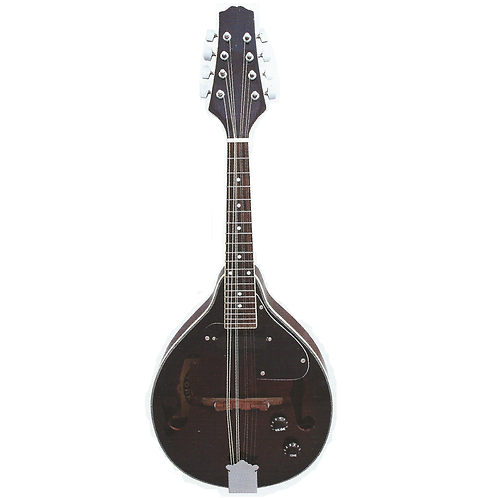 Stadium Electric Mandolin - Series 5