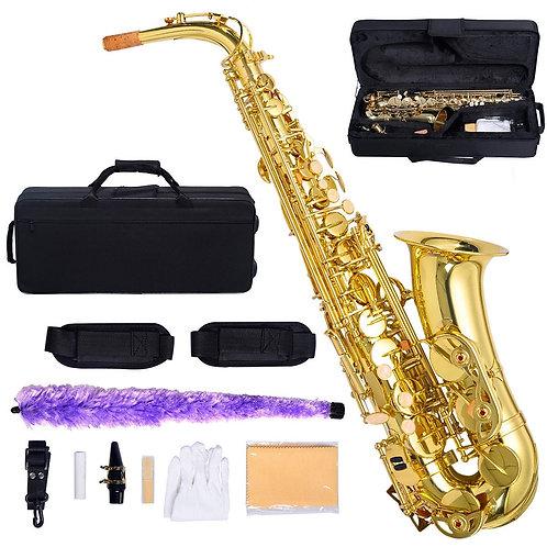 Alto Saxophone Complete Outift