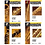 Thumbnail: Essential Elements Flute, Clarinet, Trumpet, Alto Sax Books by Hal Leonard