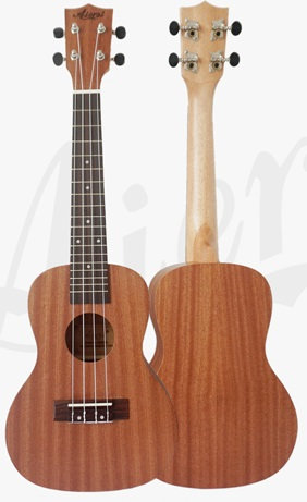 Aiersi Solid Top Concert Ukulele with Aquila Strings & Carrying Bag