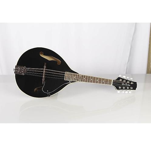 Glen Burton Acoustic/Electric Mandolin
