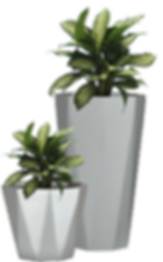 potted-plant-png-pictures-28.png