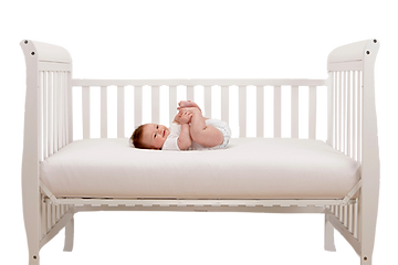 baby png copy.png