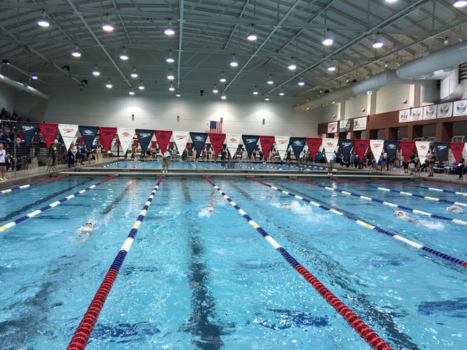 Why Swimming is My Jam