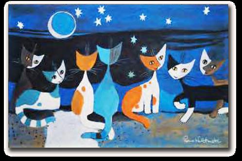 Gatti nella Notte