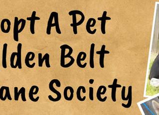 Golden Belt Humane Society/Adopt A Pet Fundraiser Oct. 3rd