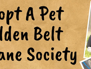 Adopt A Pet Golden Belt Humane Society Fundraiser Saturday, April 10th, 10 am - 2 pm