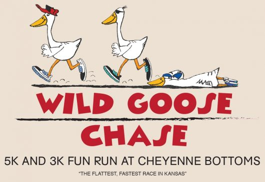 Wild Goose Chase 5k/3k Fun Run Get your running shoes ready for the fastest, flattest 5k/3k race in Kansas. The race takes runners through Cheyenne Bottoms and ends near the Kansas Wetlands Education Center.  The Wild Goose Chase 5k/3k Fun Run is held every other year on even numbered years.  When: The next Wild Goose Chase 5k/3k Fun Run is scheduled for April 7, 2018. Race Check-in at 7:30am, Race at 9:00am.  Where: Race check-in is at the Kansas Wetlands Education Center. There will be a new race route this year. The route will begin and end at KWEC, and will meander around the mitigation marsh located behind the KWEC. This route will be more of a trail run on a mowed grass surface.  Registration: Download a Race Registration Form to print and mail in your registration. Or, Register Online here. $25—ages 18 and older ($35 after Mar 27) $15—ages under 18 ($25 after Mar 27) Entry fee includes race, chip timing, t-shirt, awards, and snacks Registrations after March 27 are not guaranteed to receive a t-shirt. Register online at : https://webapps.fhsu.edu/wildgoosechase/ or print off and mail.