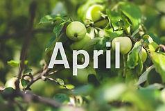 sendungen-april-100~_v-gseaclassicxl.jpg