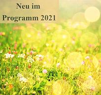 meadow-3866009_1920%20(1)_edited.jpg